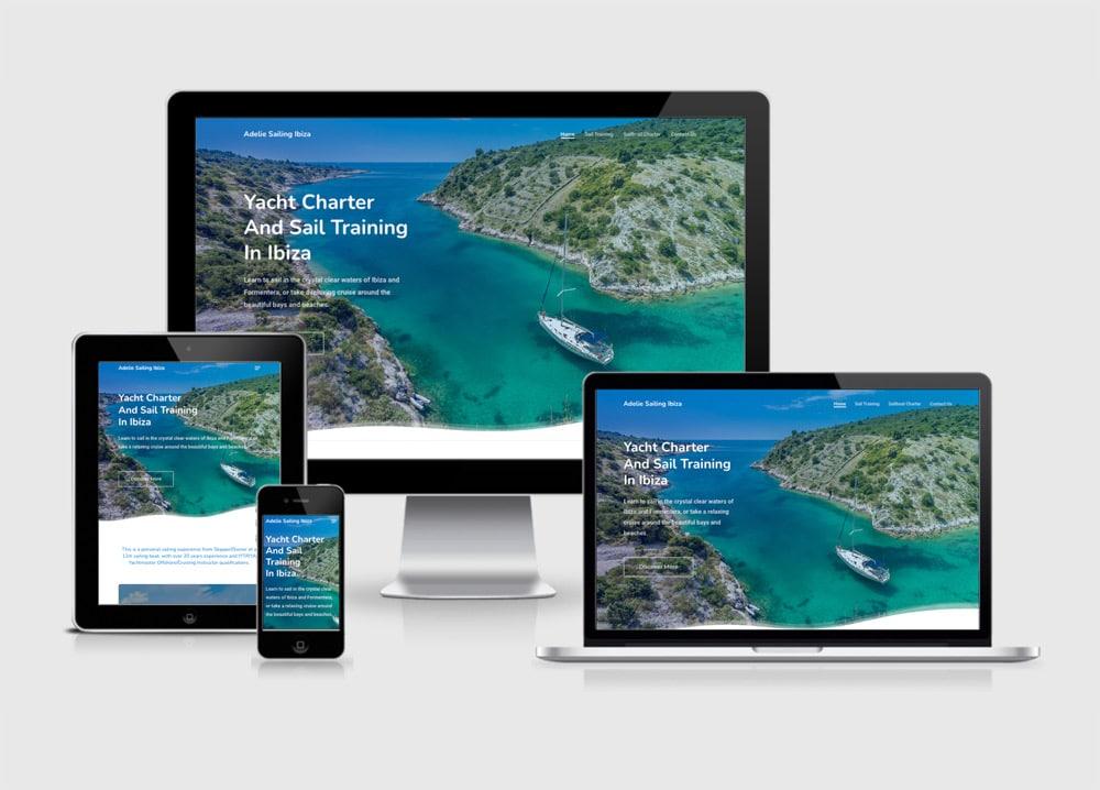 adelie web design 1